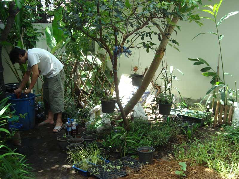 เจ้าของสวนกำลังง่วนกับปุ๋ยน้ำที่เตรียมแจกให้กับเพื่อนๆ