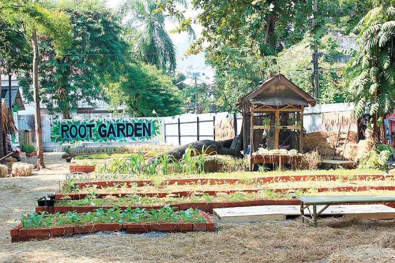 rootgarden3