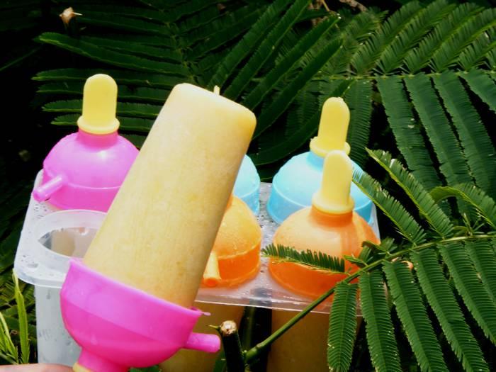 mango_ice_cream_yogurt_002