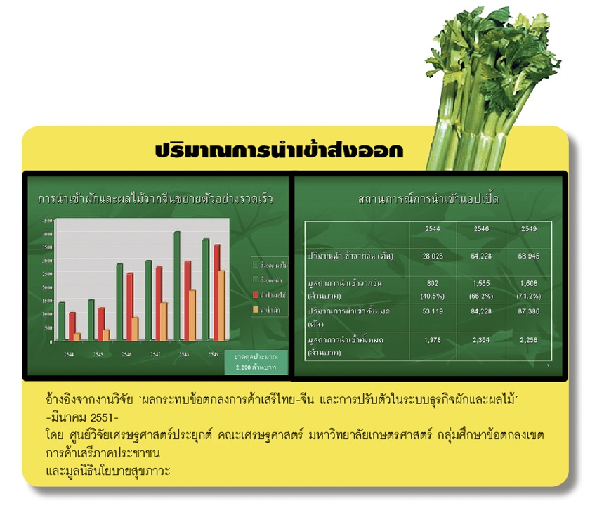 vegmarket03